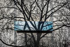 cinema of trees (part 1)