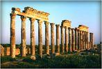 CIRCUIT en SYRIE 1998 - 13 - - -
