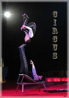 Circus, Circus 3