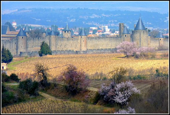 Cité de Carcassonne ,