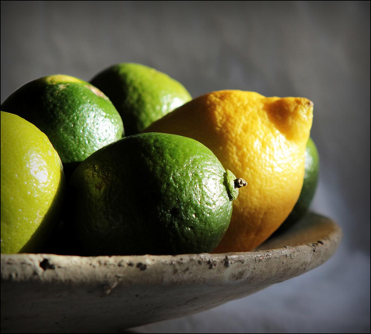 *citrus*