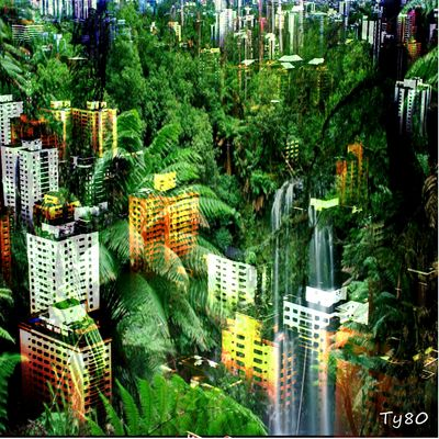 City jungle 2
