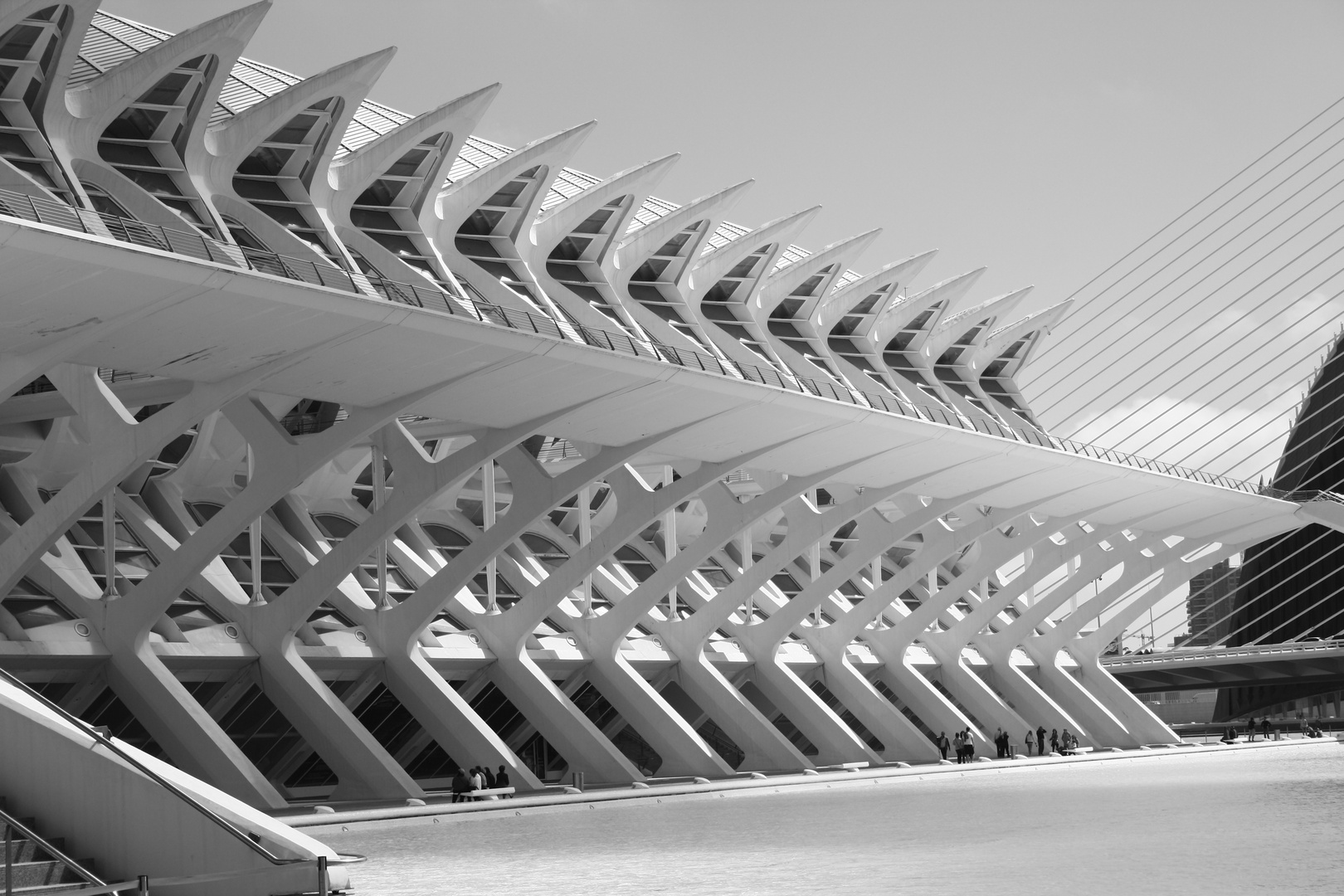 Ciudad de las artes y las Ciencias de Valencia
