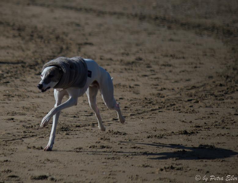 Clays Rennen gegen seinen eigenen Schatten