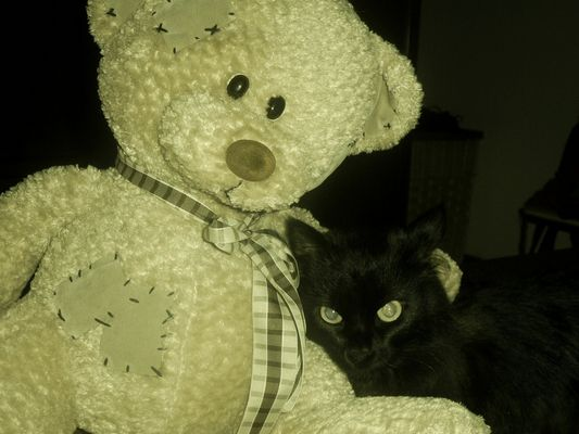 Cleo e orsetto amici per la pell..iccia!