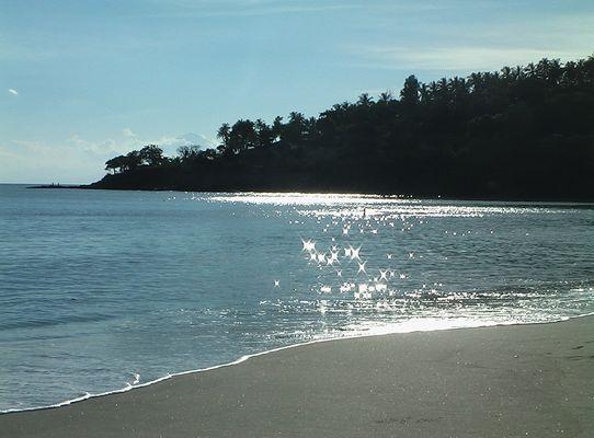 Cliché sur plage de sable noire