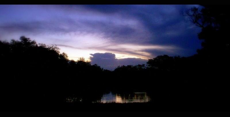 Close of Night