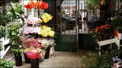 Closed market but flowers  are still outside.