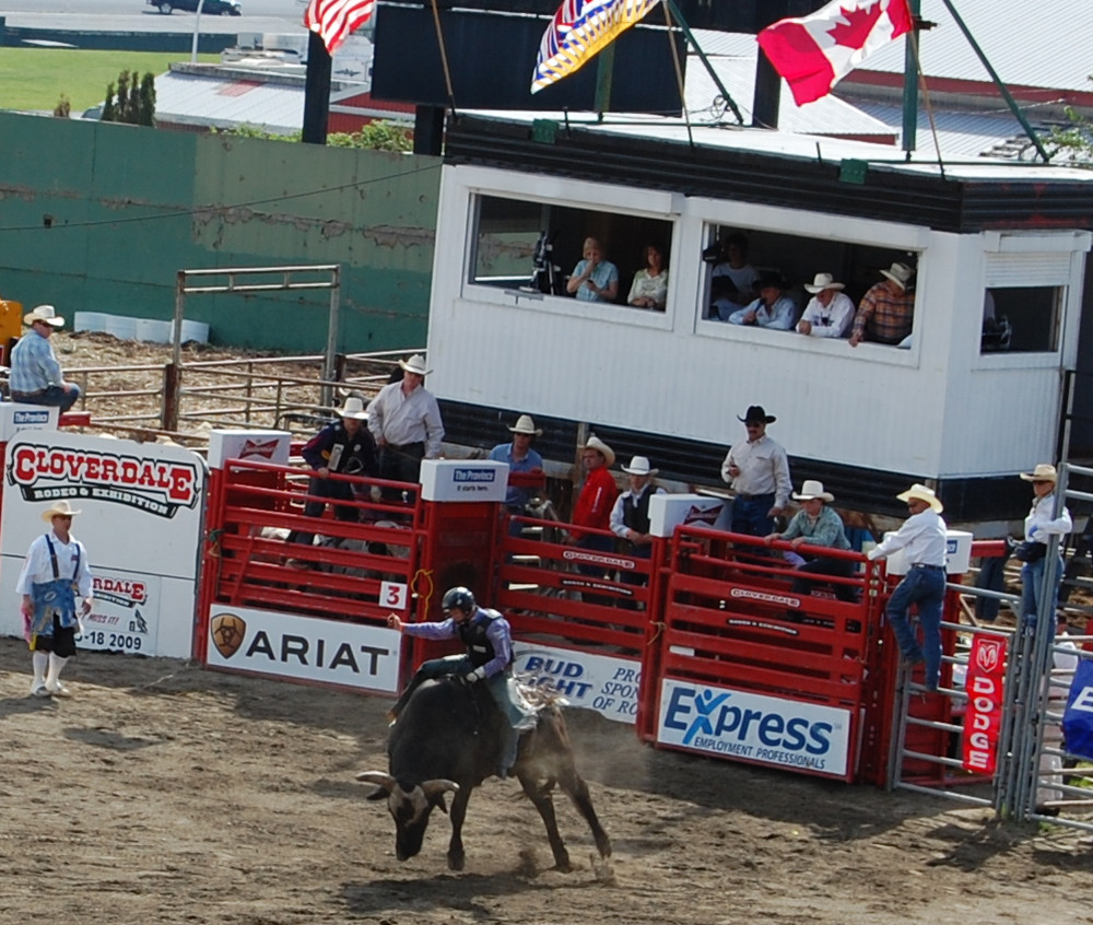Cloverdale Rodeo bull riding