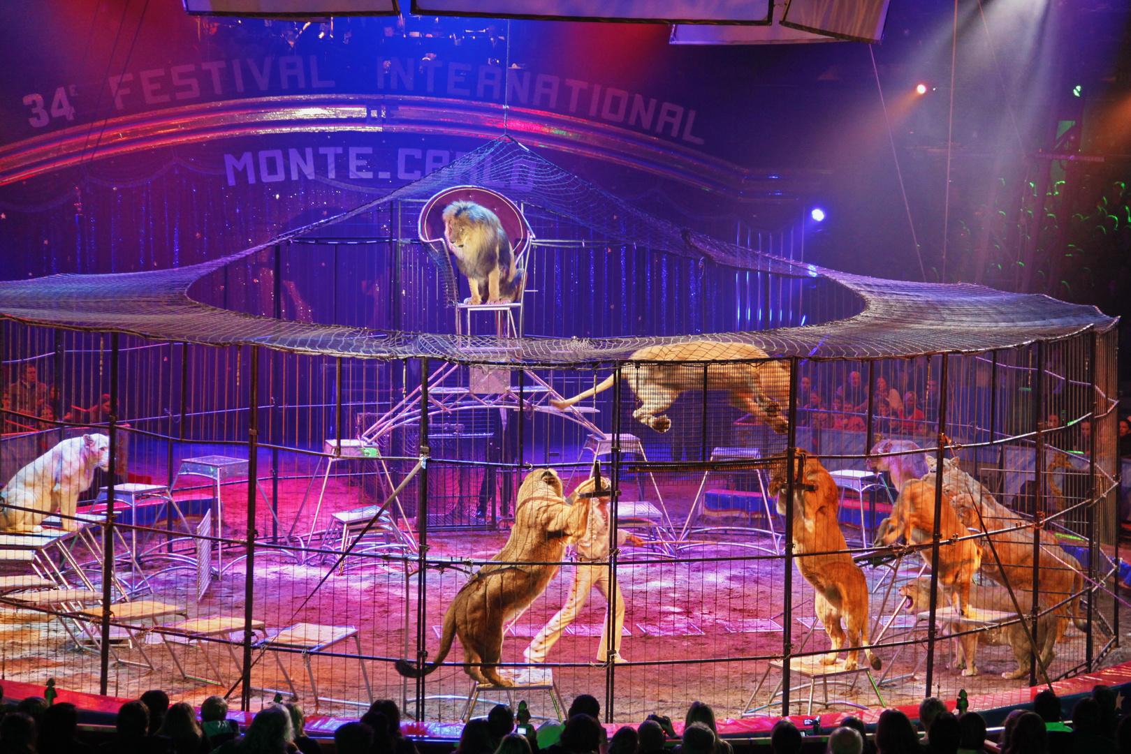 clown d or du 34e festival du cirque de monte carlo