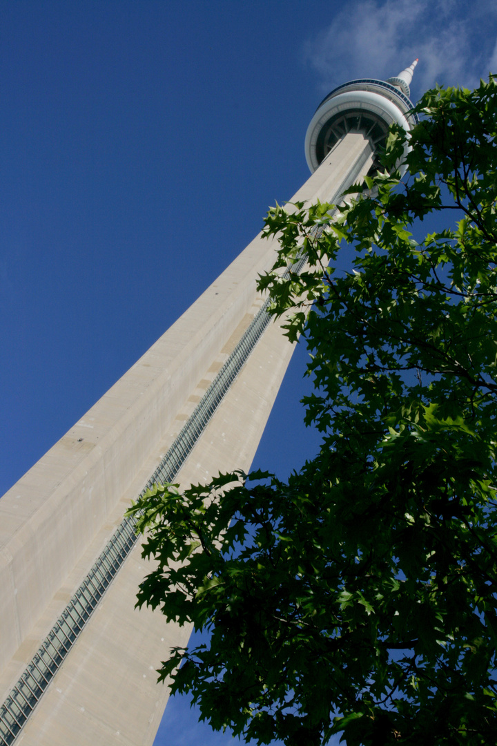 CN Tower/ Toronto