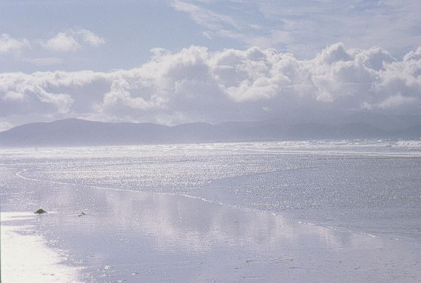 Co. Kerry - Dingle - Silverstrand