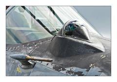 Cockpit MiG 29