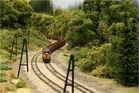 CoCo (Kartoffelkäfer) mit schwerem Güterzug (1)