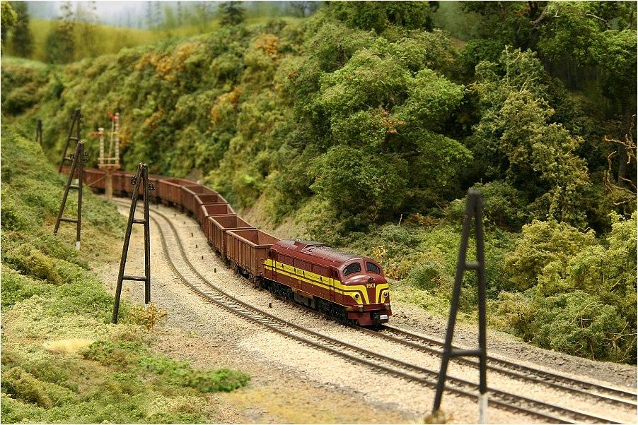 CoCo (Kartoffelkäfer) mit schwerem Güterzug (2)