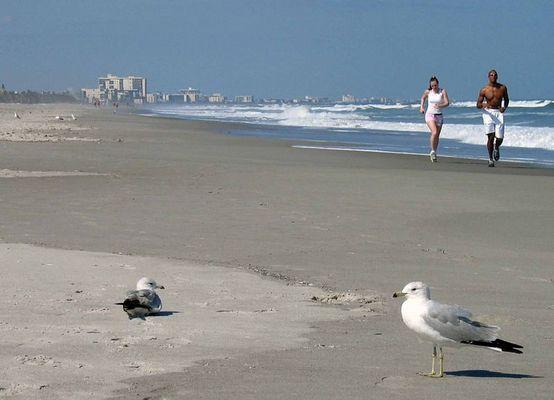 Cocoa Beach...