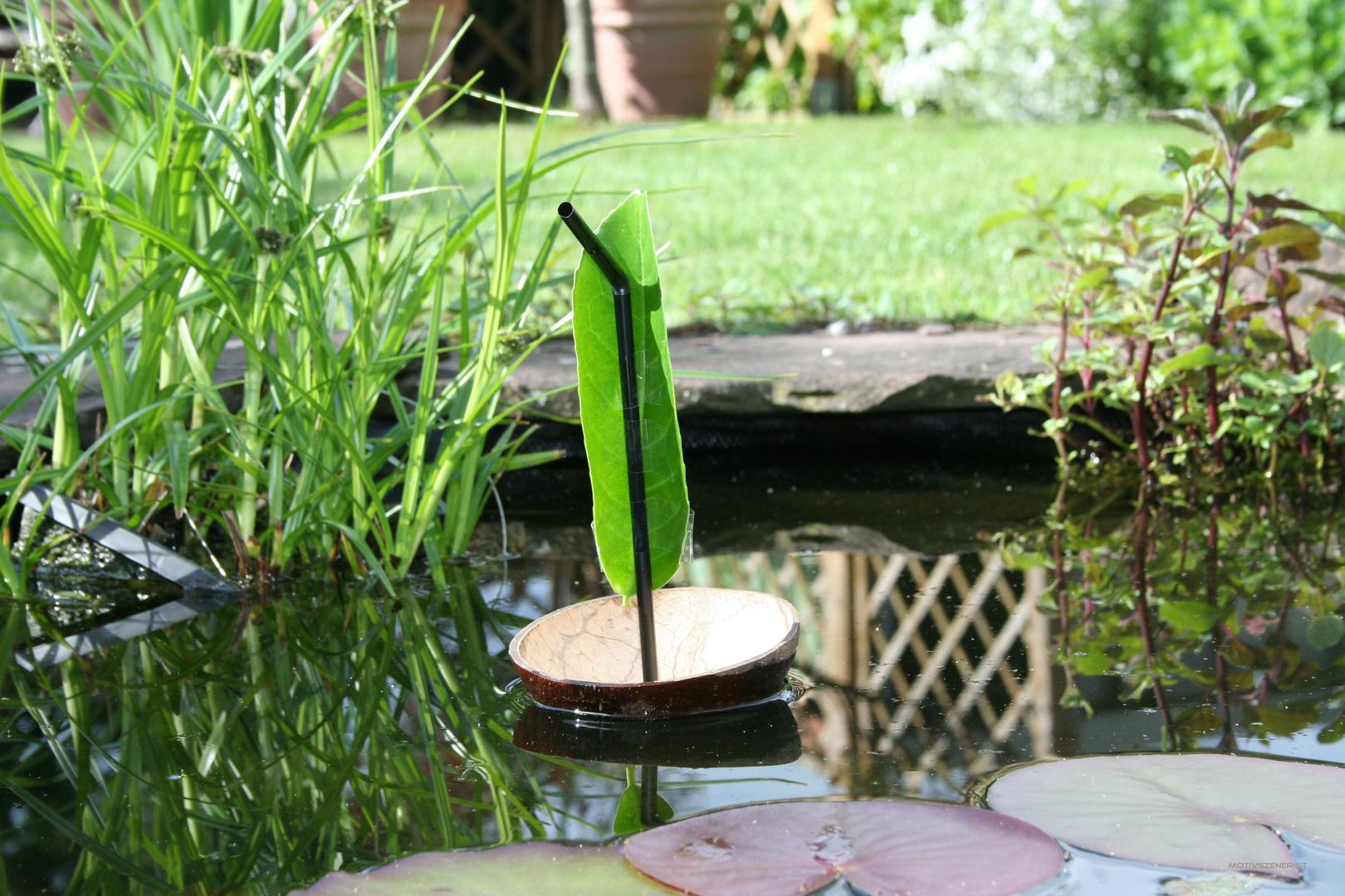 Coconutboat