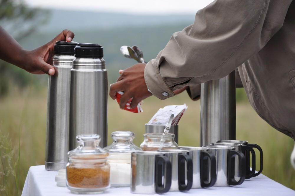 Coffee in the Bush