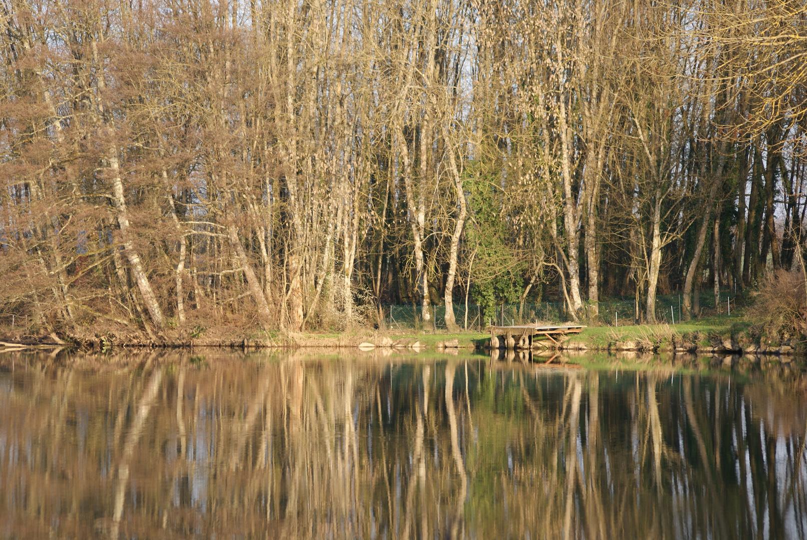Coin tranquille au bord de la Saône