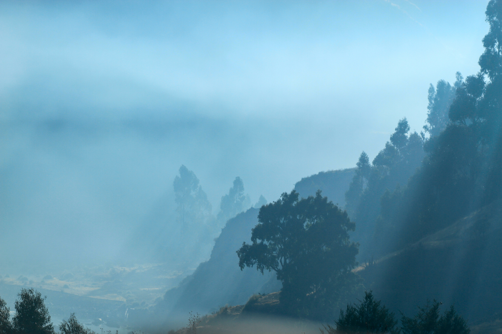 Colca Canyon in the morning mist