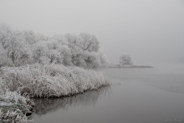 cold and foggy day on the river
