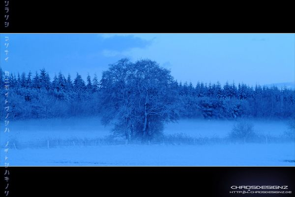 Cold Blue Times