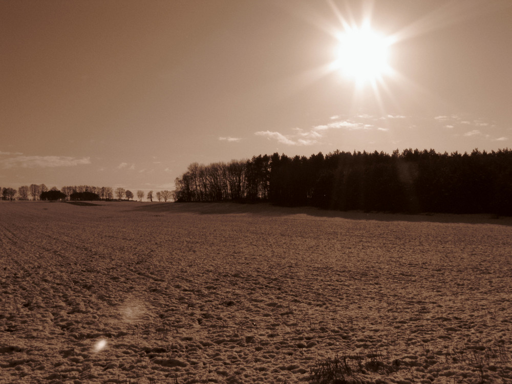 cold but sunny