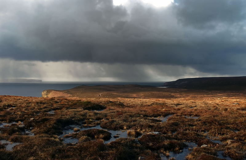 Cold Moorland