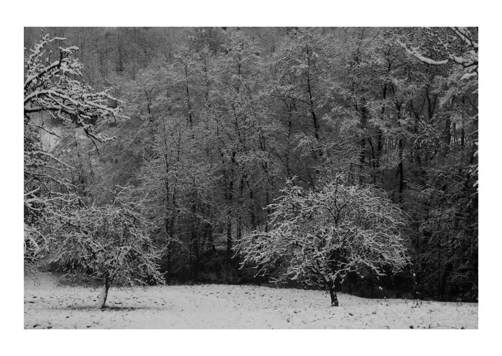 [cold.] © Simon Wieland
