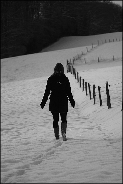 .: coldness :.