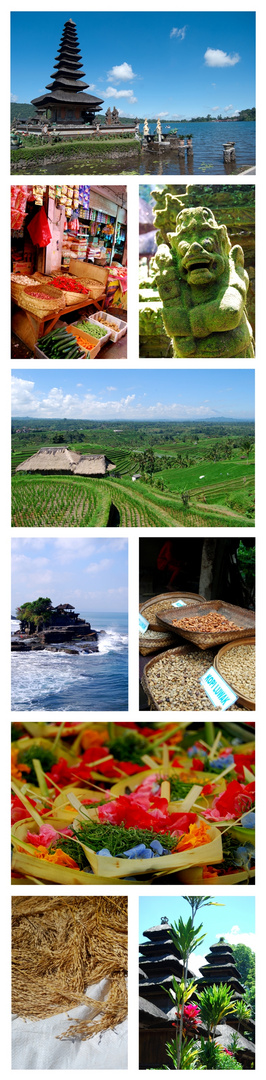 Collage Bali