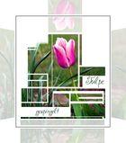 Collage einer gespiegelten Tulpe