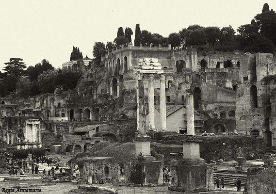 Colle Palatino Roma