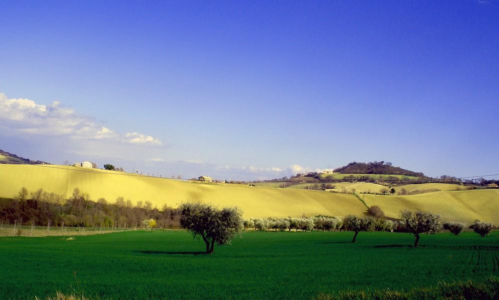 colline di oreana tomassini