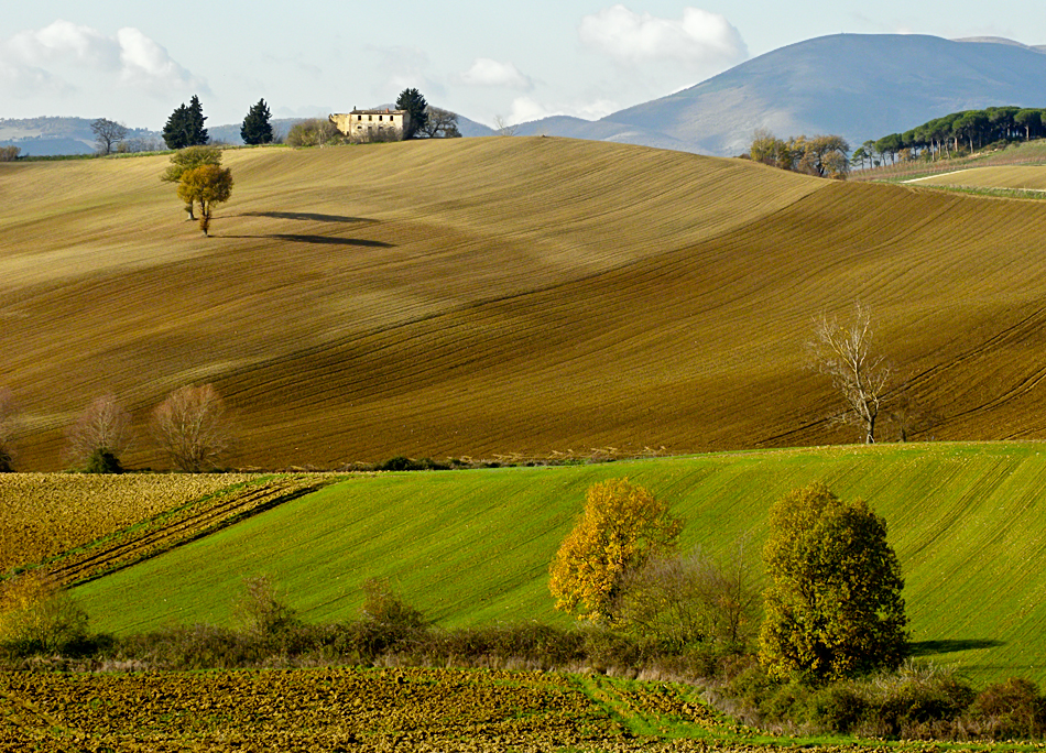 Colline a fine autunno foto immagini paesaggi campagna for Piani di campagna in collina
