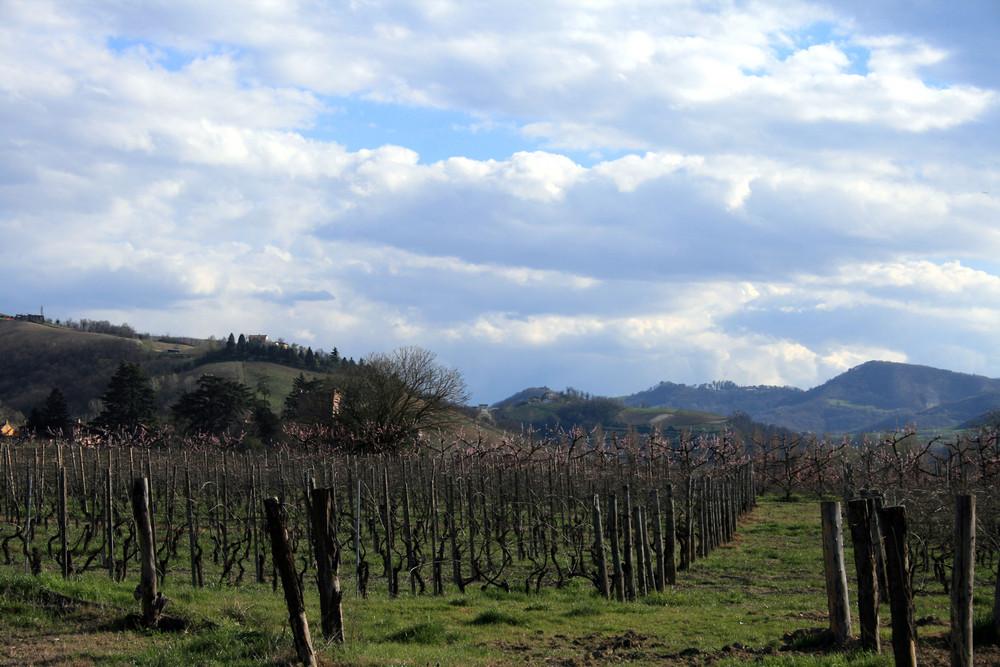 colline dell'Oltrepo