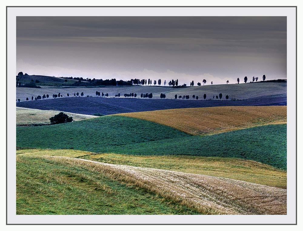 Colline Toscane 9