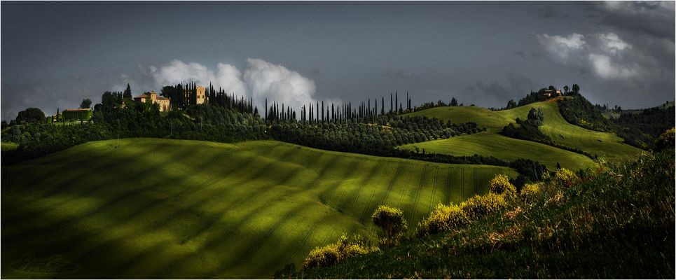* colline verdi *