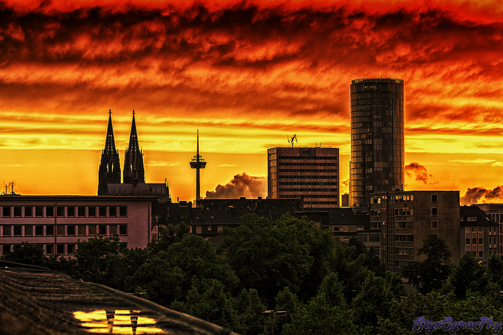 Cologne at sunset!