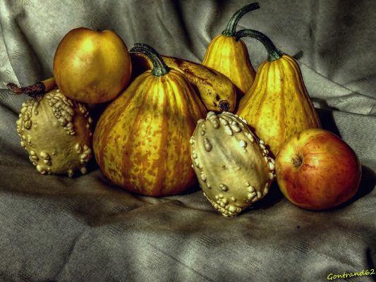 coloquintes et fruits