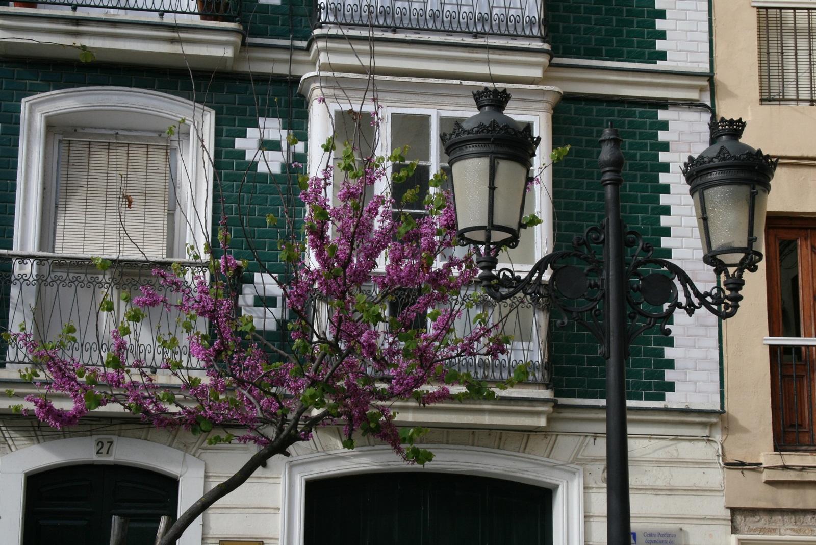 Colores de Cádiz