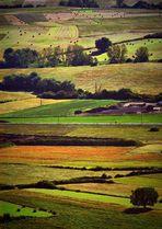 Colori in campagna
