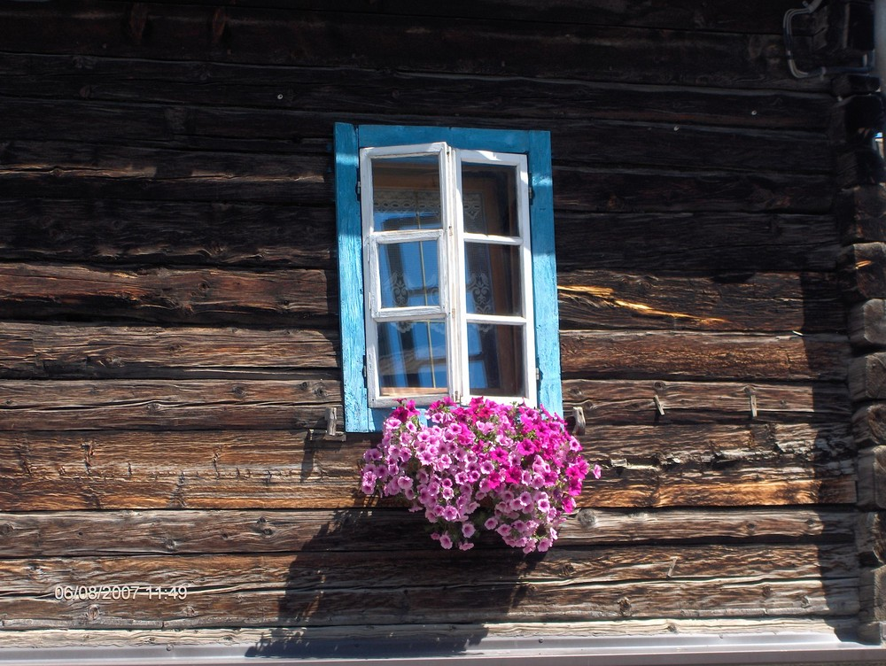 colori nel legno