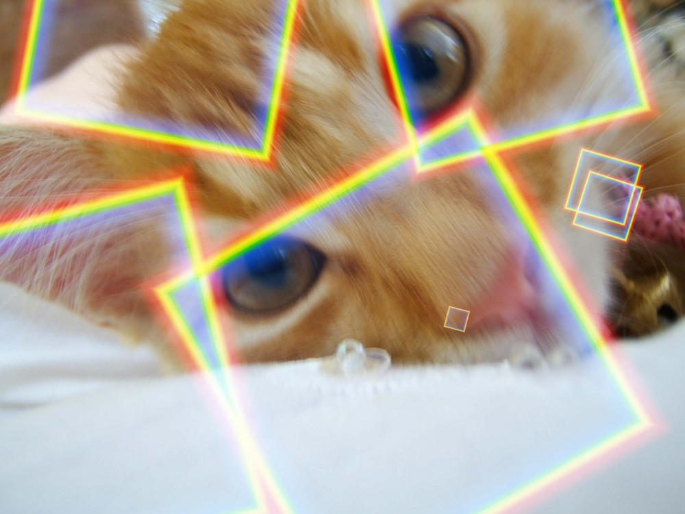 COLORKITTY...
