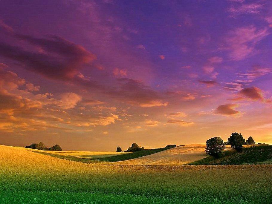Colors Land 2
