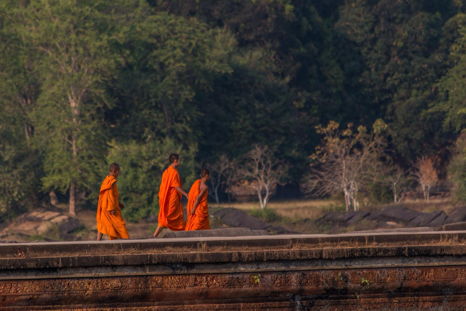 Colors of angkor