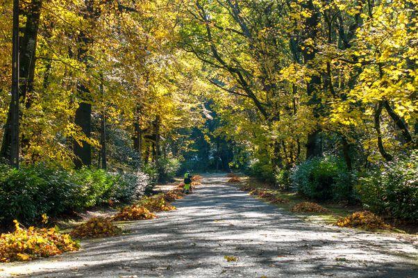 Colors Of Autumn II