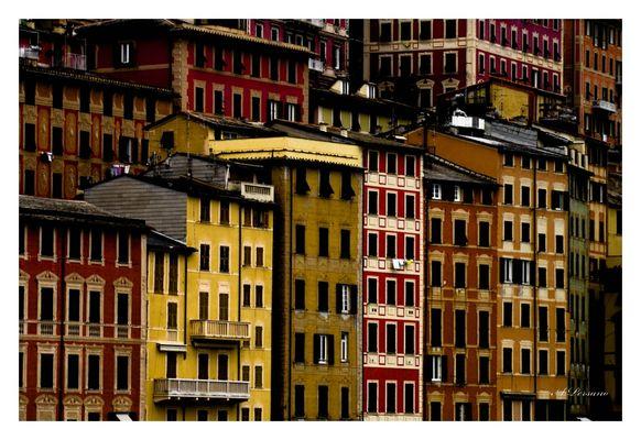 Colors of Camogli