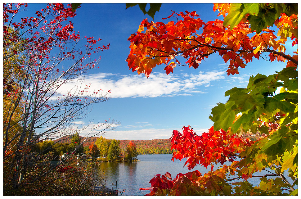 Colors Of Indian Summer 1