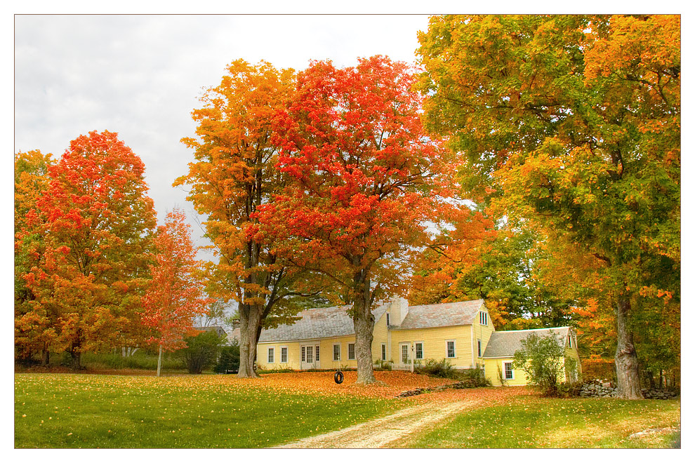 Colors of Indian Summer 3
